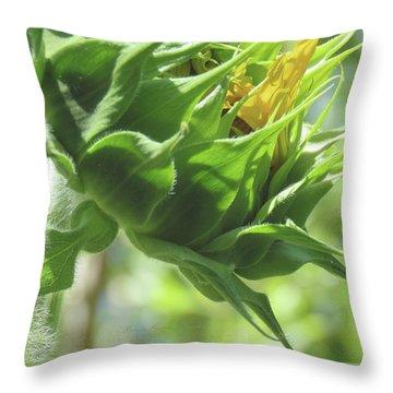 Sunshine In The Garden 13 Throw Pillow by Brooks Garten Hauschild