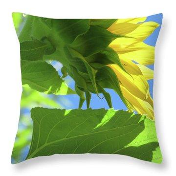 Sunshine In The Garden 19  Throw Pillow