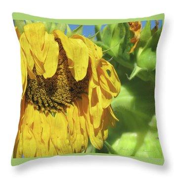 Sunshine In The Garden 34 Throw Pillow by Brooks Garten Hauschild