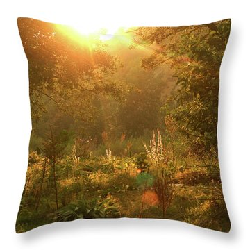 Sunshine In The Meadow Throw Pillow by Emanuel Tanjala
