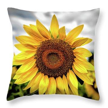Throw Pillow featuring the photograph Sunshine by Louis Dallara