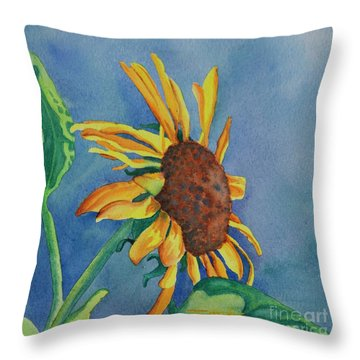 Sunshine On My Shoulders Throw Pillow by Tracy L Teeter
