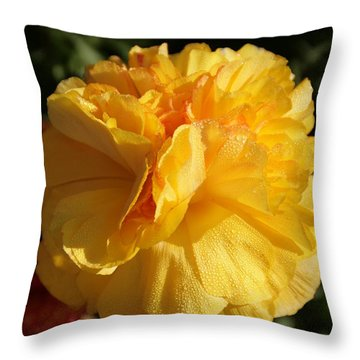 Sunshine On Sunshine Throw Pillow