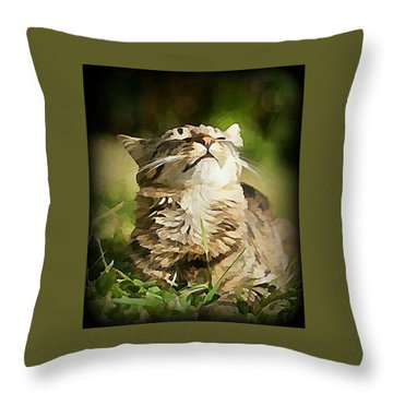 Sunshine Purrfection Throw Pillow