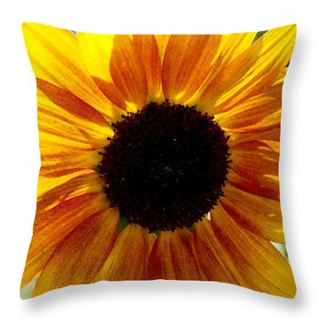 Sunshine Sunflower Throw Pillow by Russell Keating