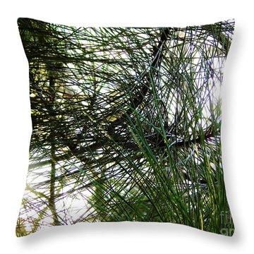 Sunshine Through Pine Needles Throw Pillow