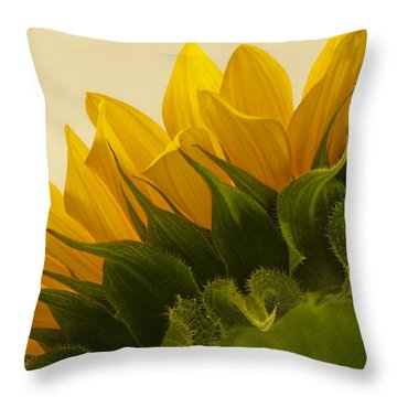 Sunshine Under The Petals Throw Pillow by Sandra Foster
