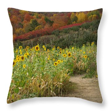Sunshine Valley Throw Pillow by Linda Mishler