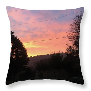 Sunshine Without The Fog Throw Pillow