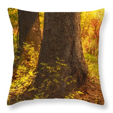 Sunstream Throw Pillow