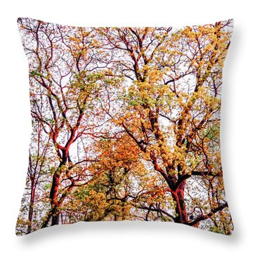 Sunstroke Throw Pillow