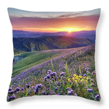 Throw Pillow featuring the photograph Super Bloom In California Desert by Peter Thoeny