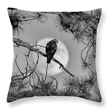 Super Moon Hawk Throw Pillow
