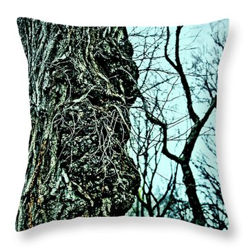 Super Tree Throw Pillow by Sandy Moulder