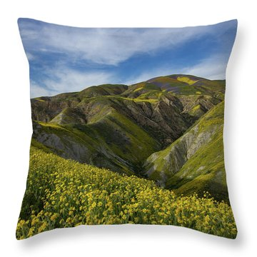 Superbloom In The Carrizo Plains Throw Pillow
