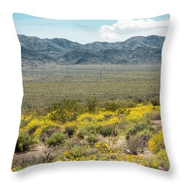 Superbloom Paradise Throw Pillow by Amyn Nasser