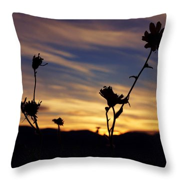Superbloom Sunset In Death Valley 100 Throw Pillow