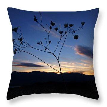 Superbloom Sunset In Death Valley 101 Throw Pillow