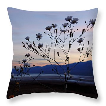 Superbloom Sunset In Death Valley 102 Throw Pillow