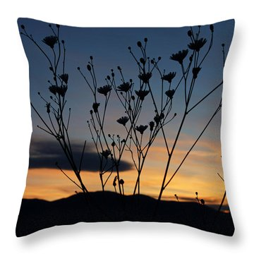 Superbloom Sunset In Death Valley 103 Throw Pillow