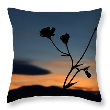 Superbloom Sunset In Death Valley 105 Throw Pillow