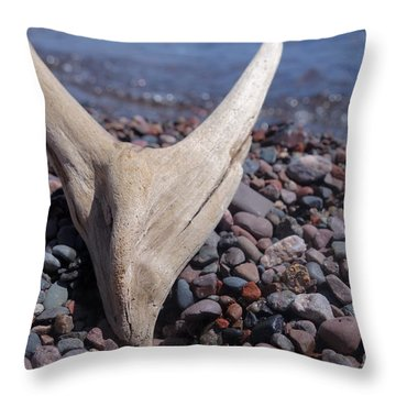 Throw Pillow featuring the photograph Superior Drift Wood by Sandra Updyke