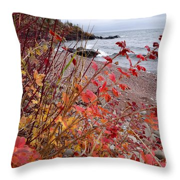 Superior November Color Throw Pillow by Sandra Updyke