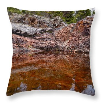 Throw Pillow featuring the photograph Superior Rock Reflections #3 by Sandra Updyke