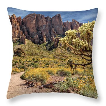 Superstition Mountain Cholla Throw Pillow