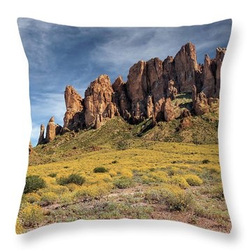 Throw Pillow featuring the photograph Superstition Mountains Saguaro by James Eddy