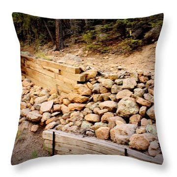 Throw Pillow featuring the photograph Support by Beauty For God