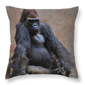 Supreme Dominance  Throw Pillow by Matt Helm