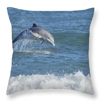 Surf Dolphin Throw Pillow