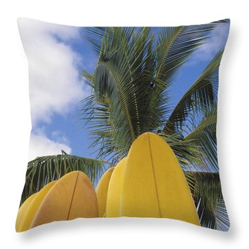 Surfboard Concession Throw Pillow by Bob Abraham - Printscapes