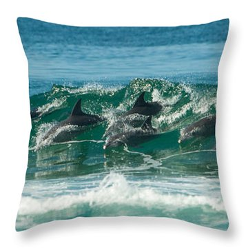 Surfing Dolphins 4 Throw Pillow