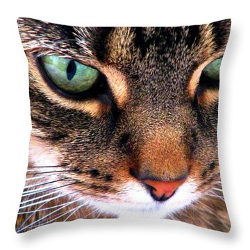 Surmising Throw Pillow