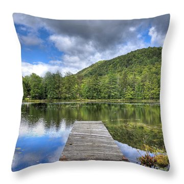 Throw Pillow featuring the photograph Surprise Pond At Palmer Point by David Patterson