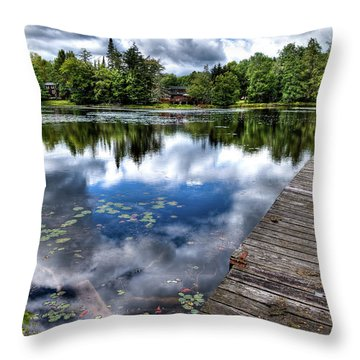 Throw Pillow featuring the photograph Surprise Pond by David Patterson