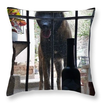 Surprise Visitor Throw Pillow