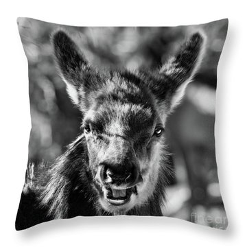 Surprise, Black And White Throw Pillow
