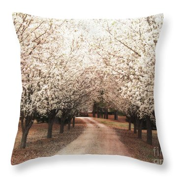 Dreamy Dogwood Trees South Carolina - Spring Blossom Trees South Carolina Throw Pillow