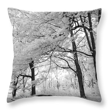 Throw Pillow featuring the photograph Surreal Infrared Black White Nature Trees - Haunting Black White Trees Nature Infrared by Kathy Fornal