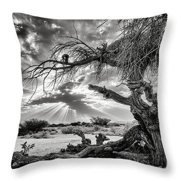 Surrealism At Its Best Throw Pillow by Arik Baltinester