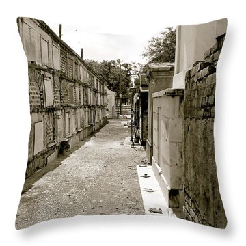 Surrounded By Loss Throw Pillow