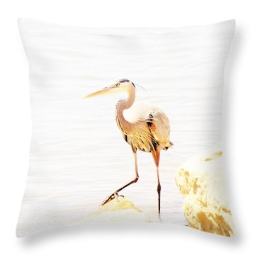 Surveying  Throw Pillow