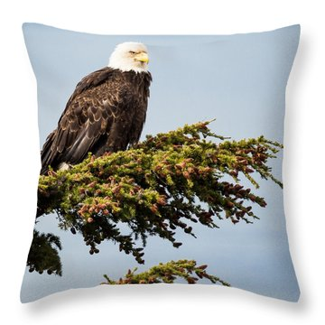 Throw Pillow featuring the photograph Surveying The Treeline by Tim Newton
