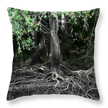Survival Of The Fittest Throw Pillow by Debra Forand