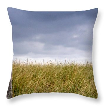 Throw Pillow featuring the photograph That That Same Small Town In Each Of Us by Dana DiPasquale