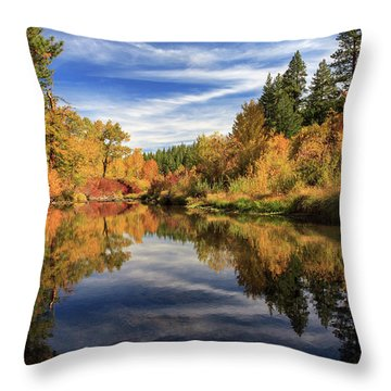 Susan River 10-28-12 Throw Pillow by James Eddy