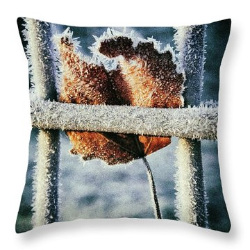 Suspended Throw Pillow by Karen Stahlros